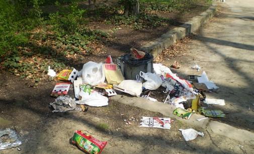 Müllabladungen, Nichtraucherschutz, Brandschutz & IT-Infrastruktur