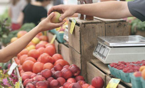 Neuorganisation der Bochumer Wochenmärkte gerät ins Stocken.