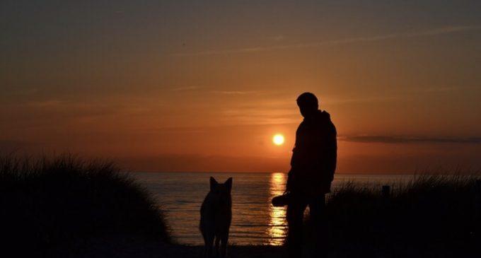 """Mehr Freiheit für den letzten Willen von Tierfreunden – Fraktion """"FDP & DIE STADTGESTALTER"""" regt Freundschaftsgräber für Menschen und Haustiere an."""