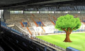 Idee für den VfL Bochum: Für jede Gelbe Karte soll Baum gepflanzt werden.
